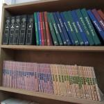 图书馆-很难买到华文书